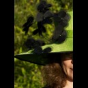 "Gorgeous & Glorious Lime Sinamay Hat with Black ""Dancing"" Silk Flowers"